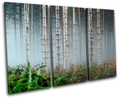 Forest Fog Landscapes - 13-1153(00B)-TR32-LO